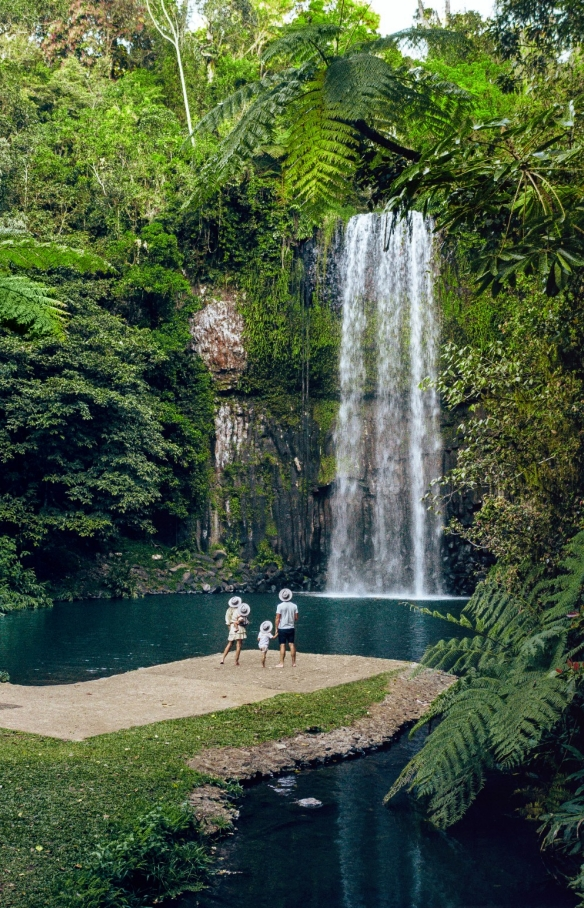 Family looking at Millaa Milla waterfall surrounded by lush rainforest in Queensland © Tourism and Events Queensland