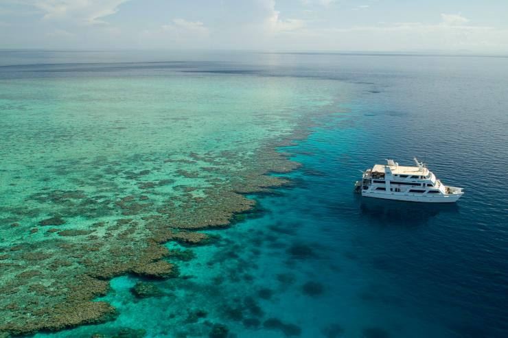 Ribbon Reef - Great Barrier Reef, QLD © Tourism Australia